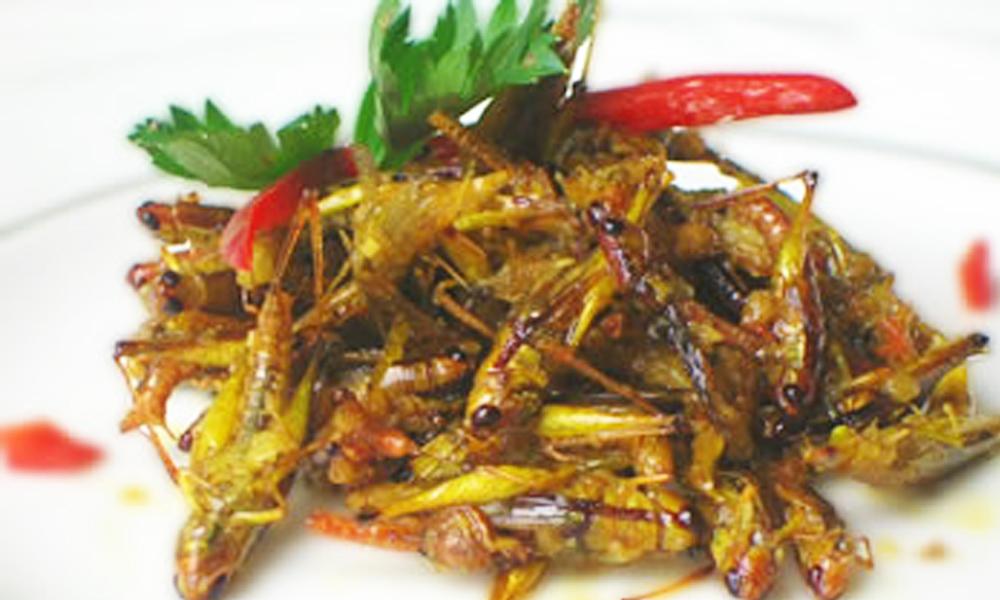 Crispy grasshoppers